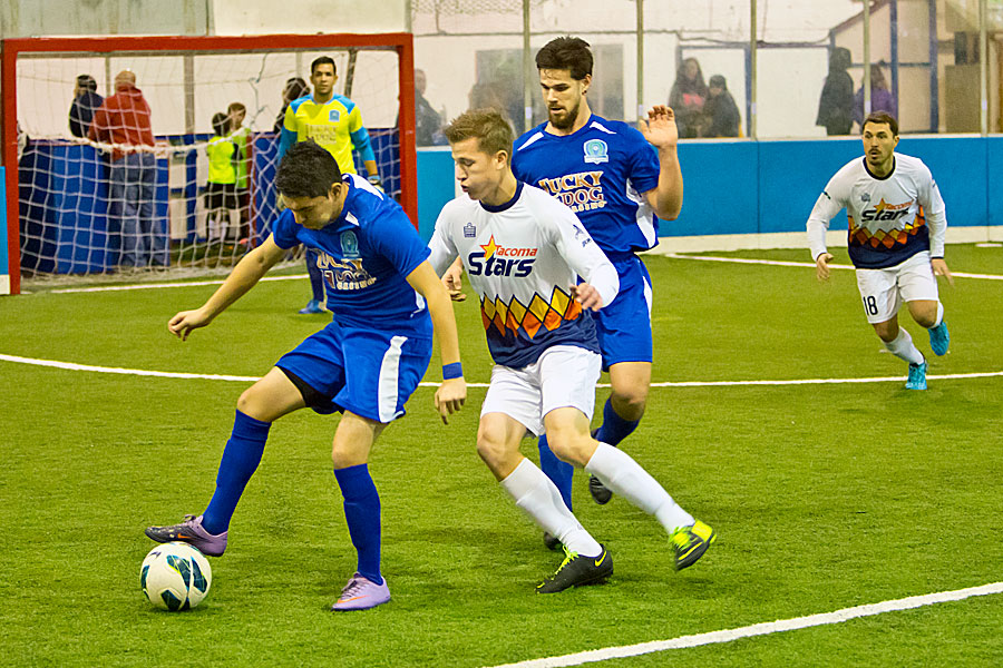 Guts & Glory: It's the Stars and Artesians in the other WISL semi in Tacoma on Saturday night.