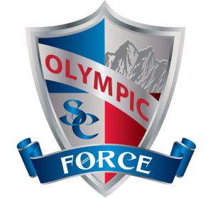 OSC - Sheild - Force (PNG) - 600